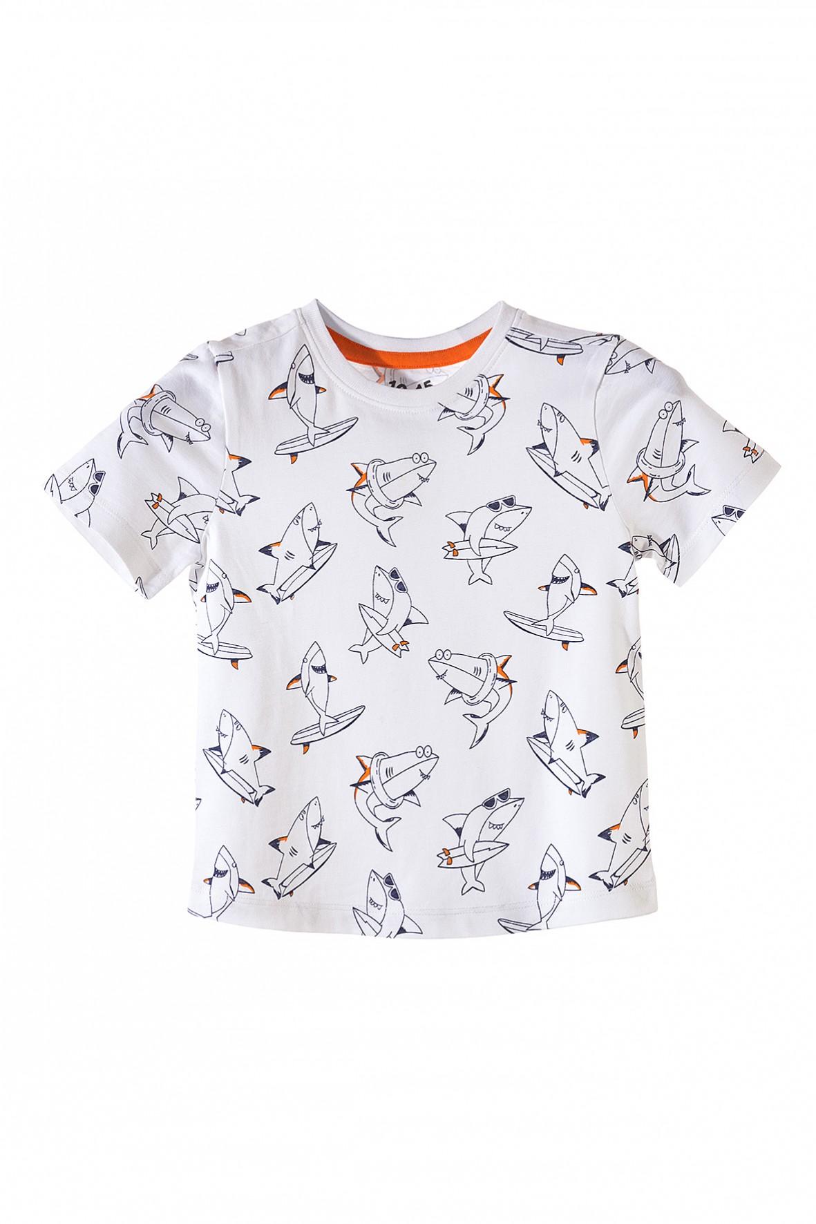 T-shirt dla chłopca- rekiny