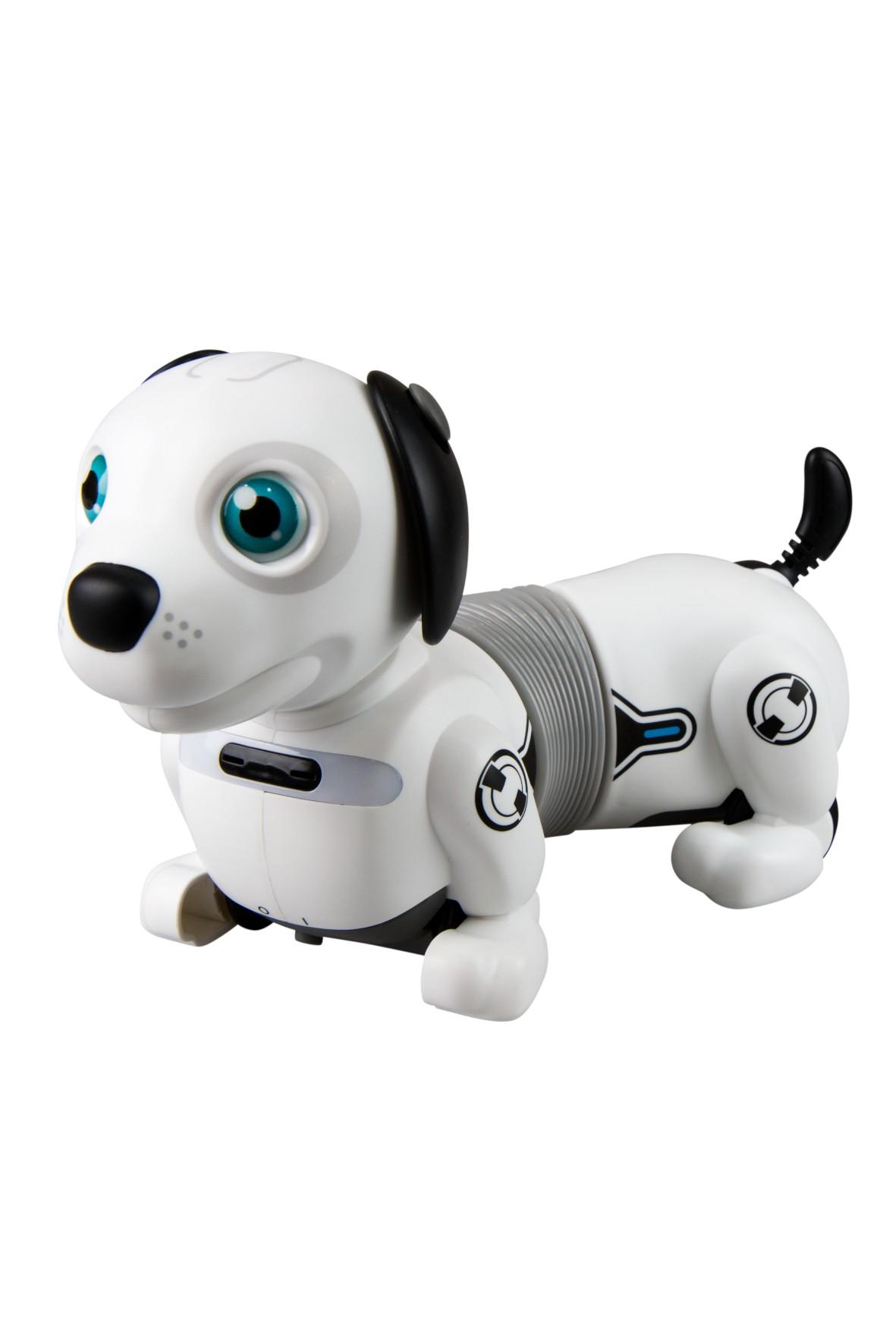 Robot Dackel Junior