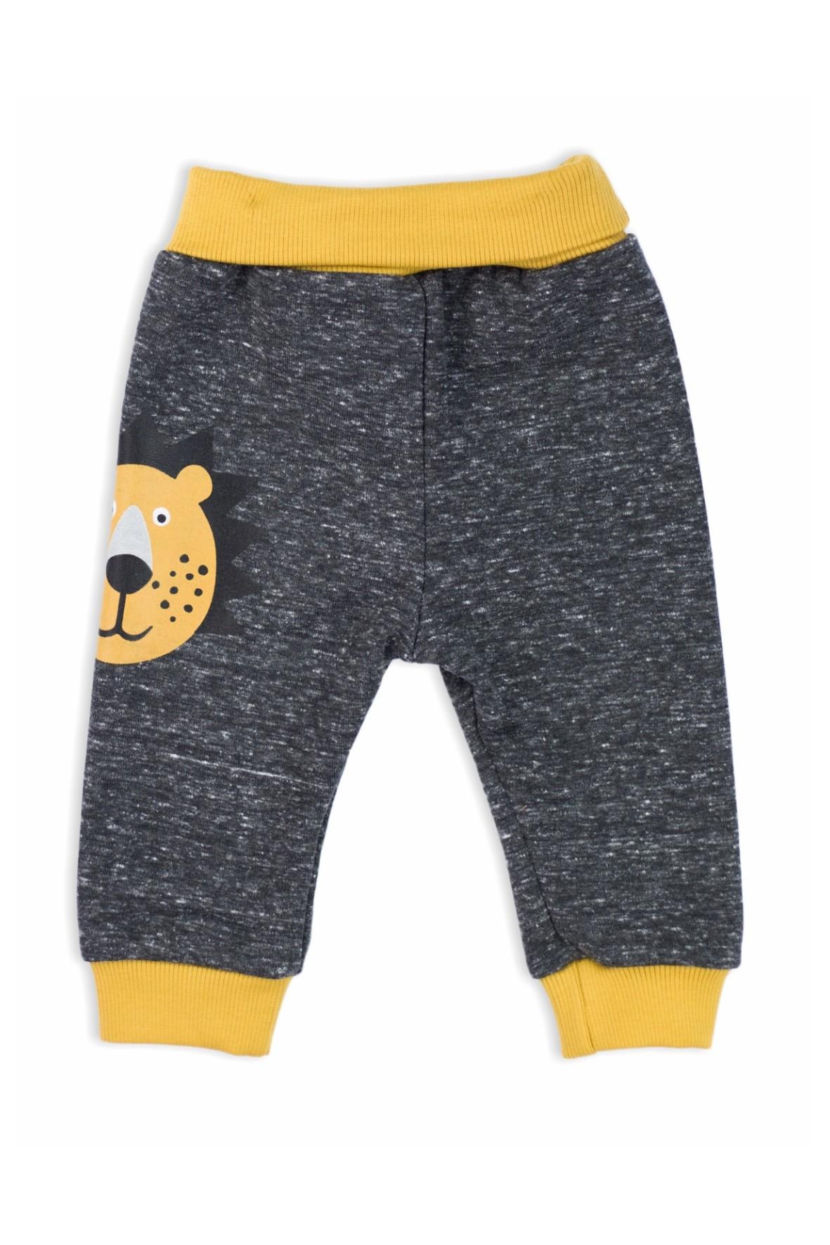 Spodnie dresowe niemowlęce Lion