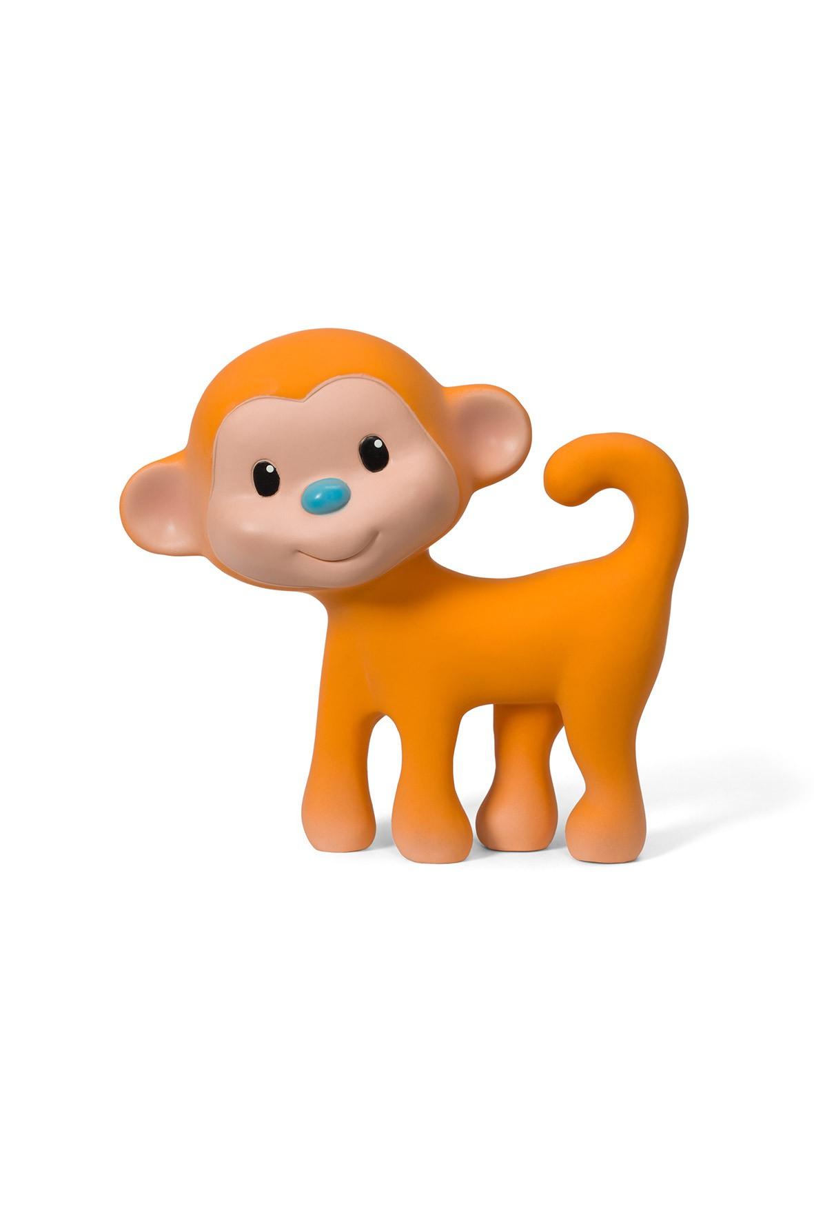 Gryzak - małpka piszczałka