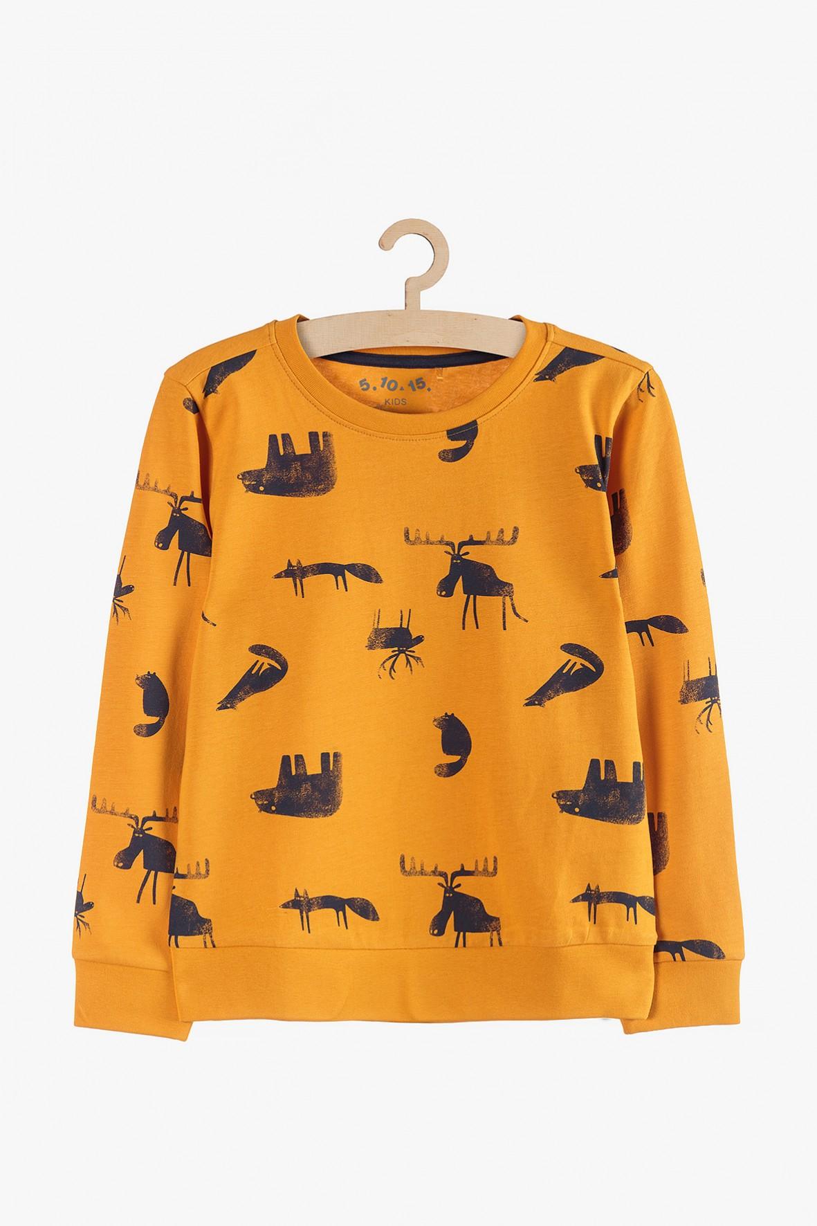 Dzianinowa bluzka z długim rękawie-zwierzęta leśne