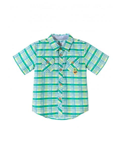 Koszula chłopięca krótki rękaw 1J3406