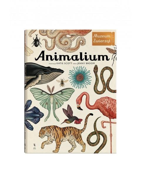 "Książka ""Animalium"""