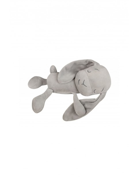 Lawendowy Śpioch - królik Effiki szary