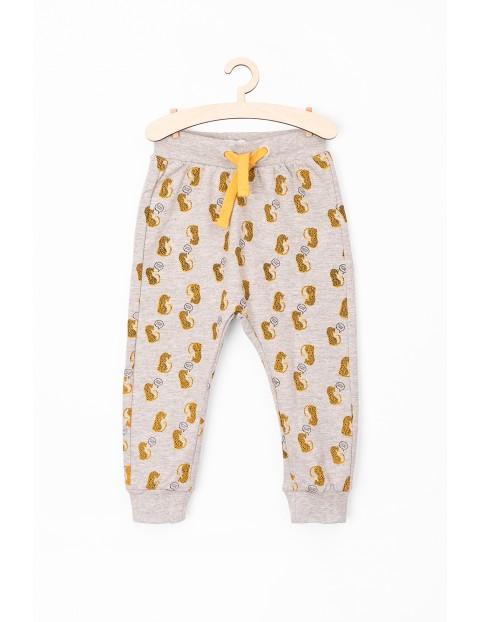 Spodnie niemowlęce w lamparty