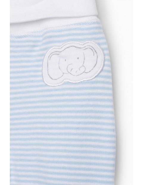Półśpiochy niemowlęce w Słoniki 2pak