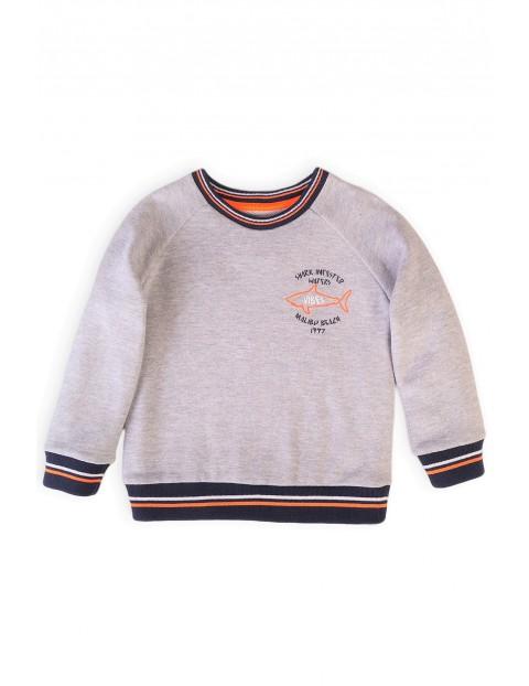 Bluza dresowa chłopięca w kolorze szarym z rekinem