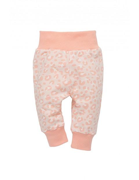 Spodnie niemowlęce dresowe 5M35AM