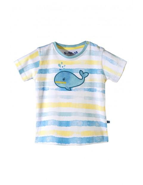 T-shirt niemowlęcy 5I3404