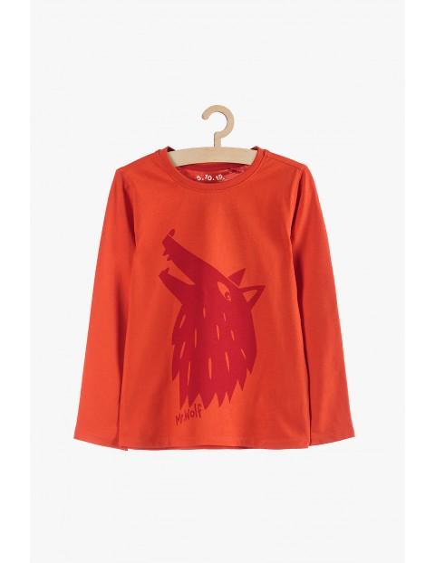 Bluzka chłopięca pomarańczowa z wilkiem