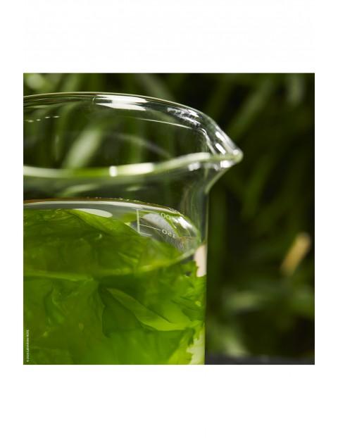 NUXE BIO Lekki korygujący krem nawilżający - algi morskie 50 ml