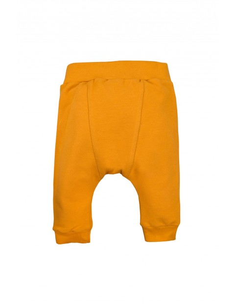 Bawełniane spodnie dresowe - miodowe