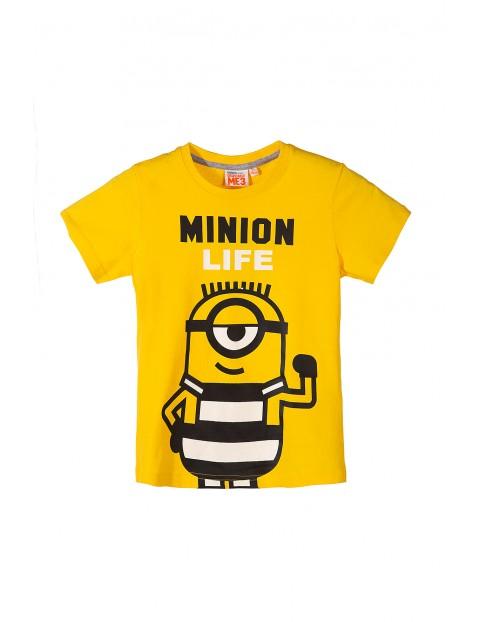 T-shirt chłopięcy Minionki 2I34AV