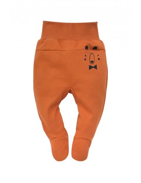 Półśpiochy bawełniane pomarańczowe Bears Club