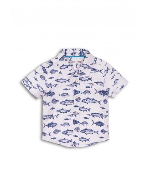 Koszula bawełniana z krótkim rękawem w rybki