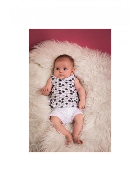 Komplet niemowlęcy bluzka i spodenki
