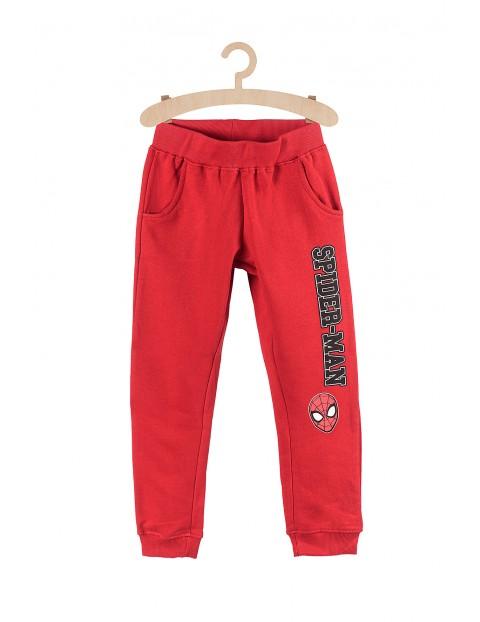 Dresowe spodnie dla chłopca Spiderman