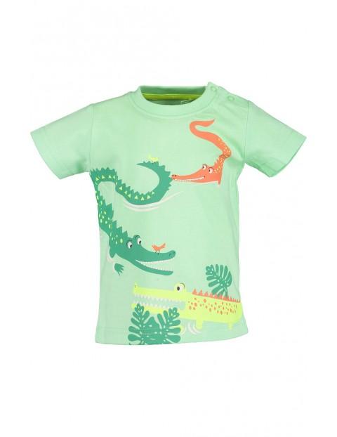 Koszulka chłopięca zielona z krokodylami