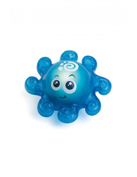 Świecące Zwierzątko - Niebieska Ośmiorniczka 12msc+