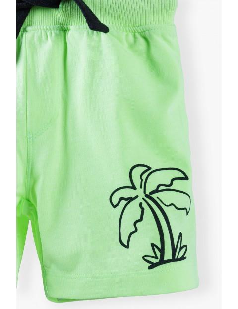 Szorty chłopięce w kolorze limonkowym z palmą
