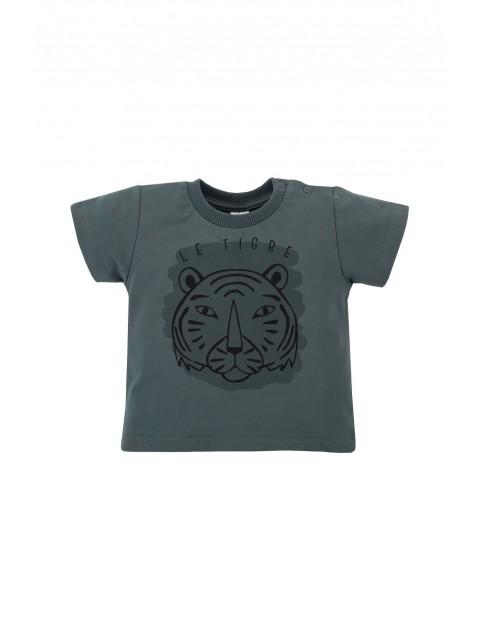 Bawełniany t shirt  niemowlęcy z tygrysem - zielony