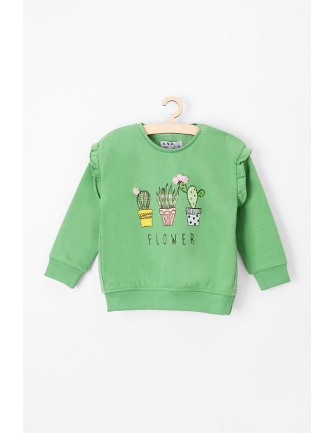Bluza  niemowlęca zielona z kaktusami