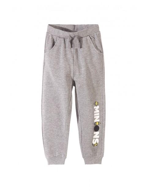 Spodnie dresowe Minionki 1M33A4