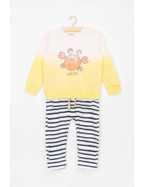 Komplet ubrań- spodnie i bluza dzianinowa z krabem
