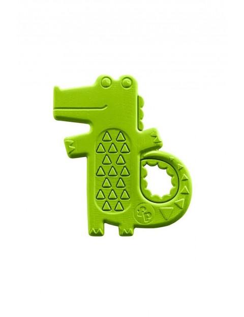 Aligatorek gryzak Fisher Price 5O33DO