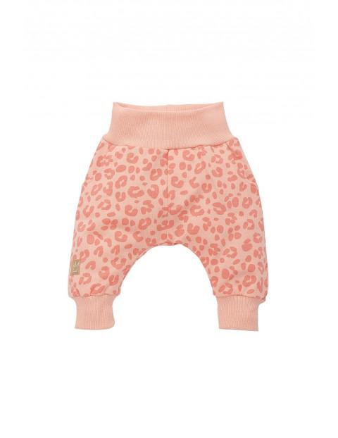 Spodnie niemowlęce 100% bawełna 5M35AK