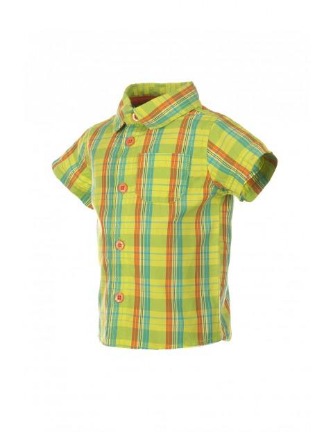 Koszula niemowlęca 5J2803