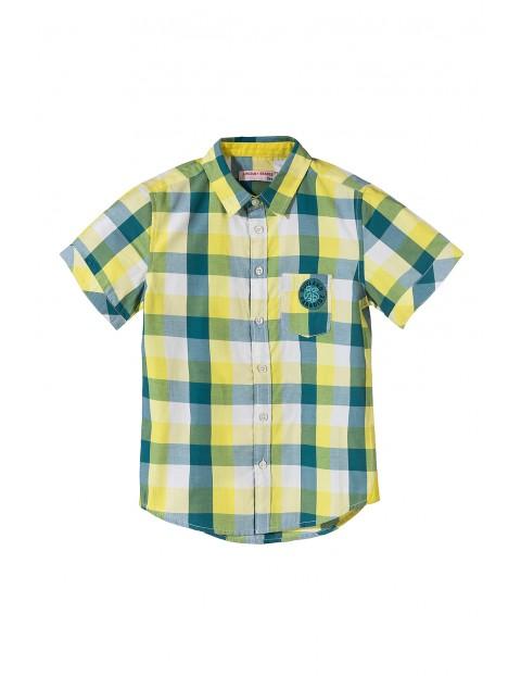 Koszula chłopięca 100% bawełna 2J3409