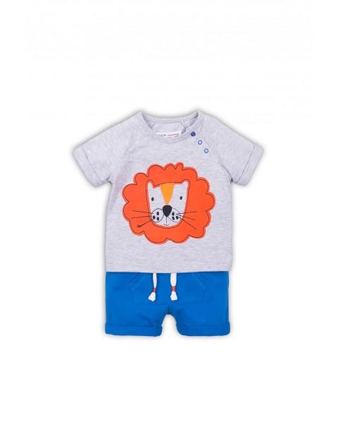 Komplet niemowlęcy z tygrysem - t-shirt i spodenki