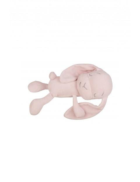 Lawendowy Śpioch - królik Effiki róż