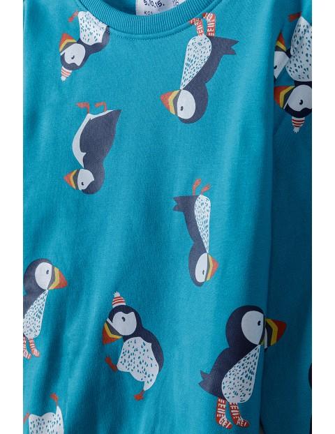 Bluza dresowa chłopięca w Pingwiny