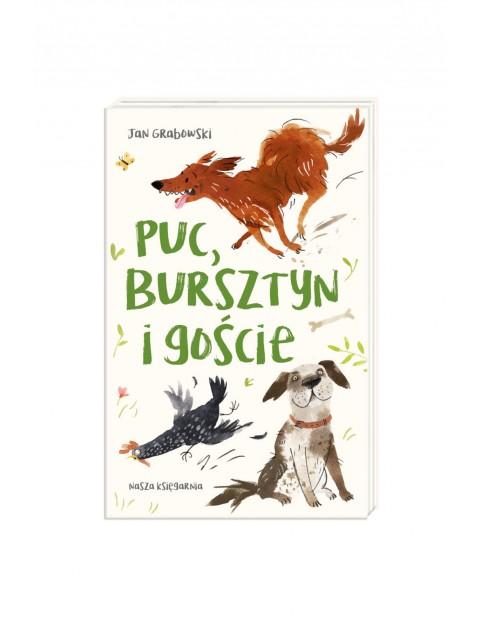 Książka - Puc Bursztyn i goście
