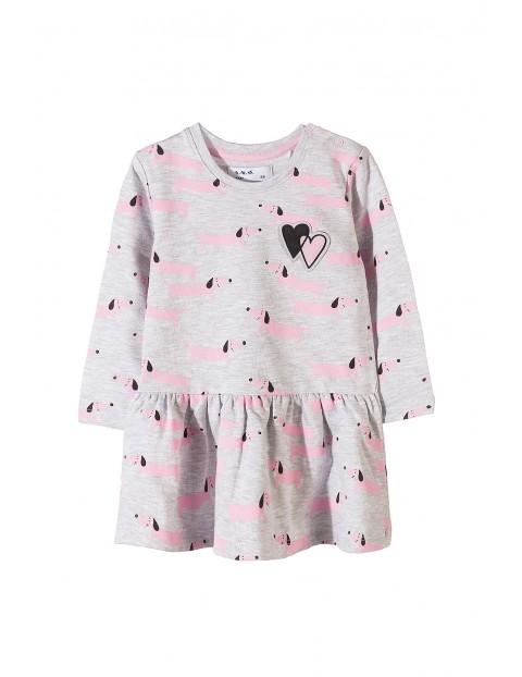 Sukienka niemowlęca dzianinowa 5K3411