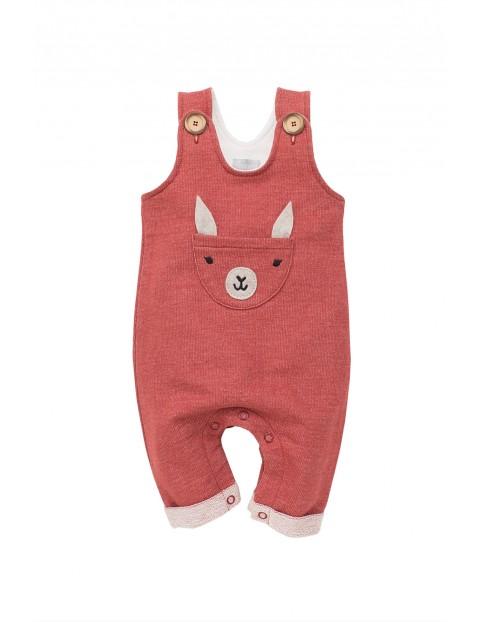 Spodnie niemowlęce na szelkach
