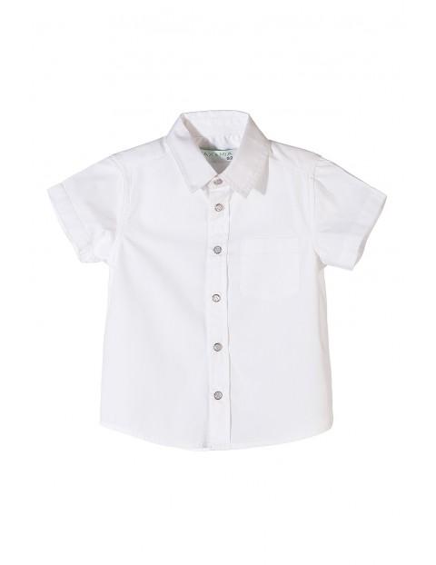 Koszula chłopięca krótki rękaw 1J3503