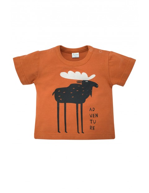 T-Shirt niemowlęcy pomarańczowy Bears Club