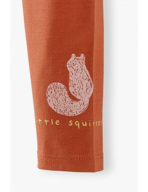 Leginsy niemowlęce  z wiewiórką - pomarańczowe