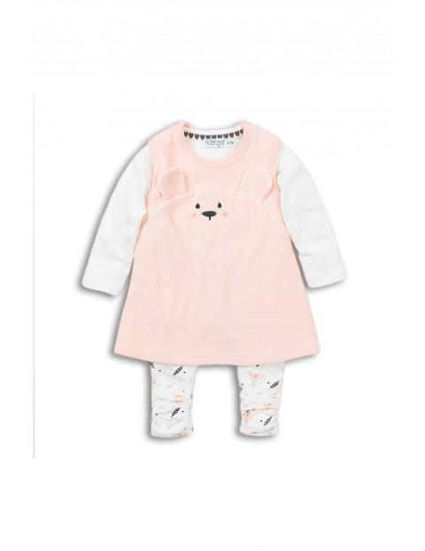 Komplet ubrań dla niemowlaka- bluzka, leginsy i sukienka