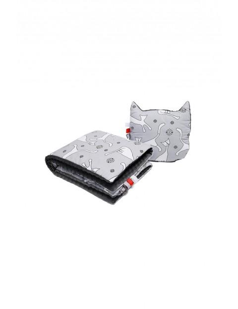 Kocyk + poduszka koty 3Y33I2