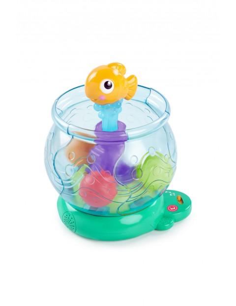 Zabawne Akwarium z piłeczkami