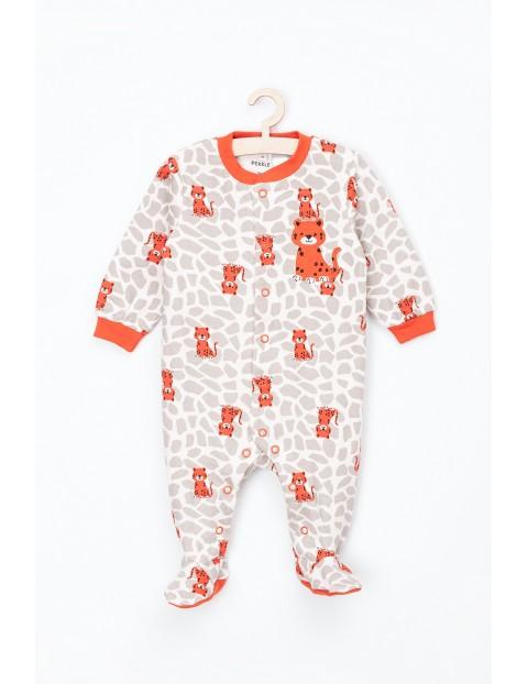 Pajac niemowlęcy bawełniany- tugrysek