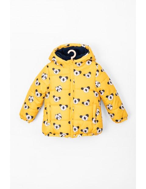 Kurtka dla niemowlaka- żółta w pandy