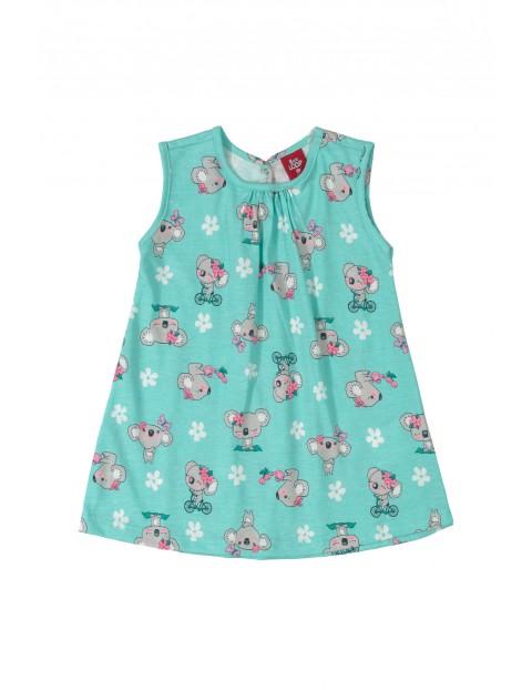 Sukienka niemowlęca w misie koala - niebieska