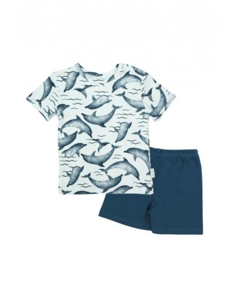 Piżama chłopięca koszulka i spodenki w delfiny