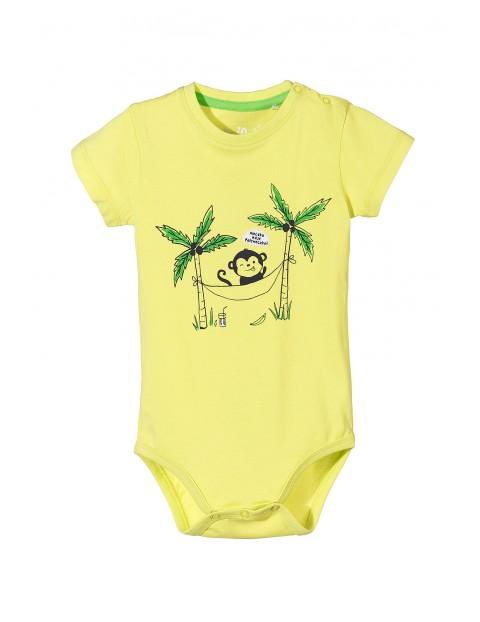 Body niemowlęce 5T3433