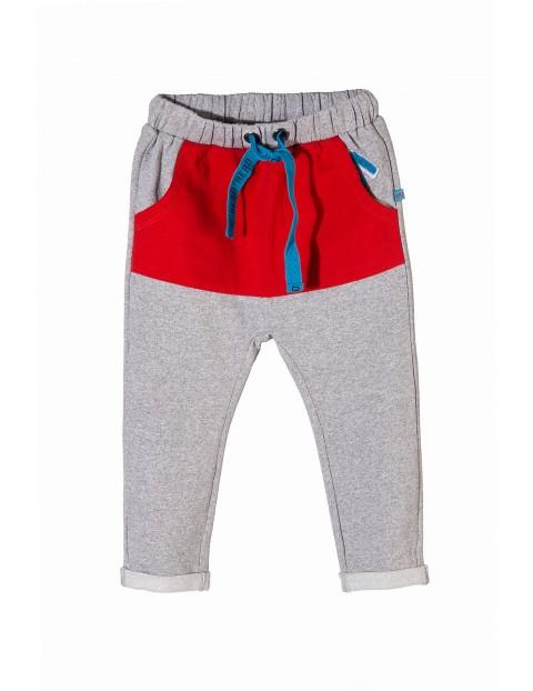 Spodnie dresowe niemowlęce 5M3403